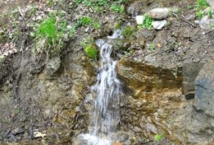 Где попить родниковой воды: источники Москвы и области