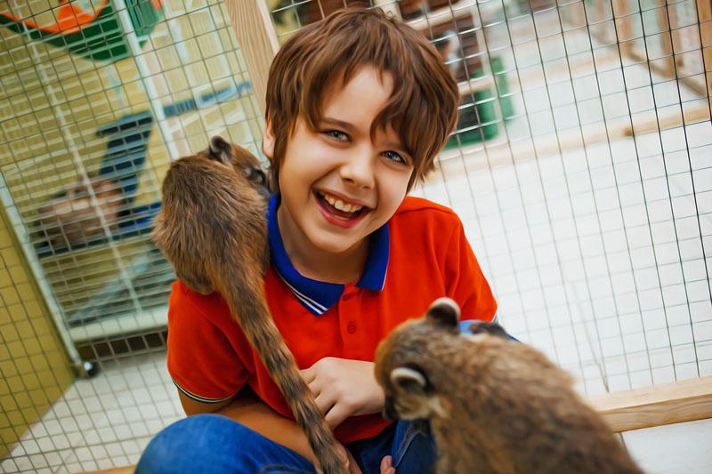Контактный зоопарк Big Funny
