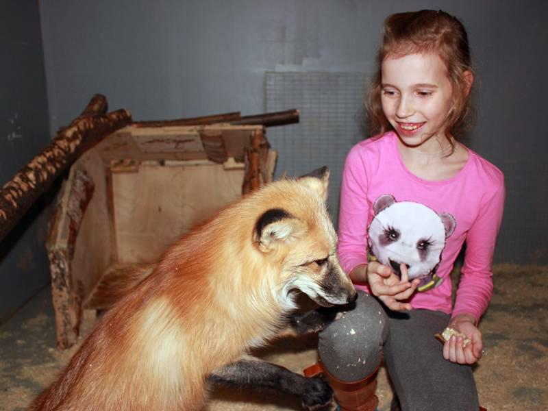 Контактный зоопарк «Лесное посольство»