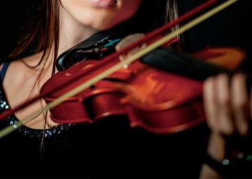 Где взрослому научиться играть на скрипке с нуля: все курсы и школы Москвы