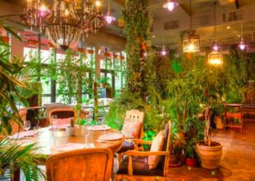 Самые уютные рестораны Москвы в экостиле
